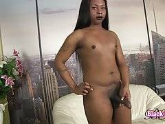India Cumms is a sexy tgirl with a hot body, a sexy round ass and a huge hard cock! Watch this sexy transgirl stroking her big hard cock!